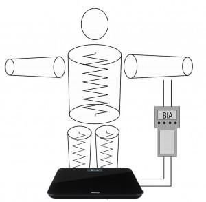 Bioelektrische Impedanzanalyse
